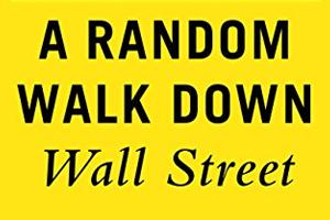 Arandom walk down wall streeet , black sa-serif text over marigold yellow background.