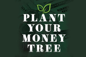 plant your money tree cover